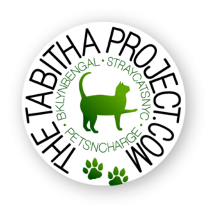 Tabitha Project Logo