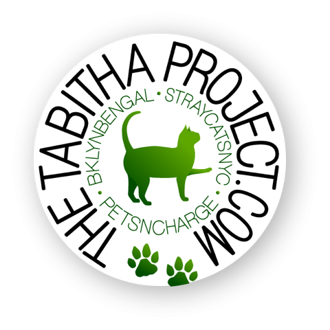 Tabitha Project